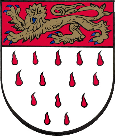 Chichester City Council coat of arms
