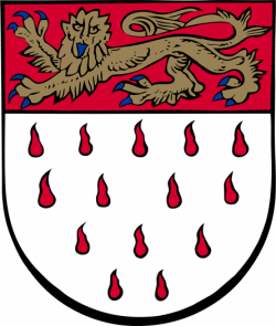 Chichester City Council - Coat of Arms