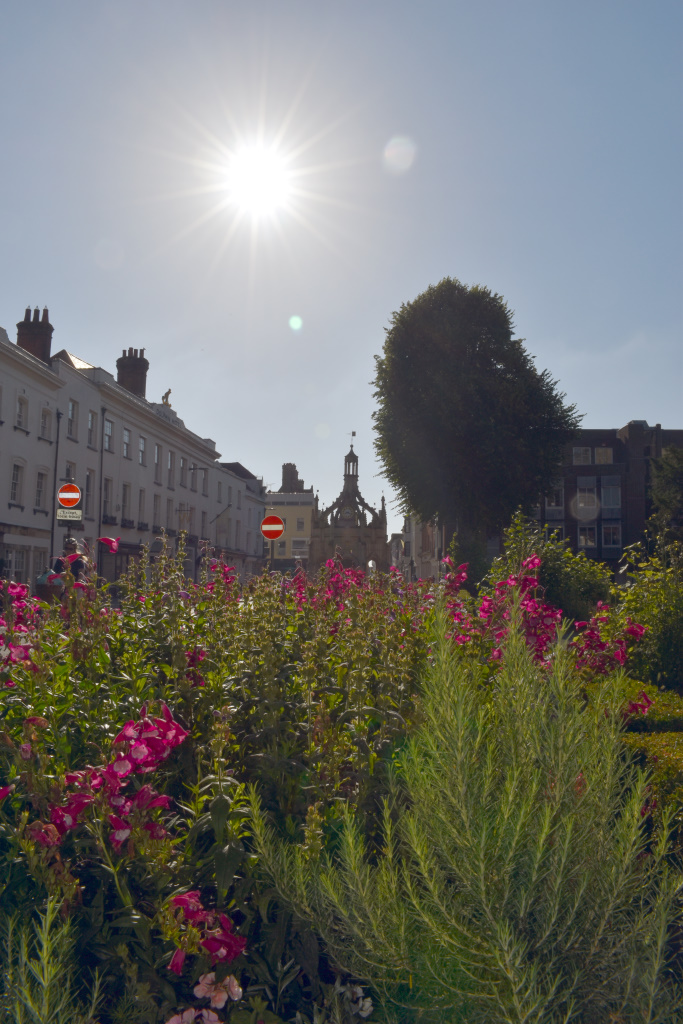 Cathedral beds - wildflower planting - facing east - Market Cross in the background