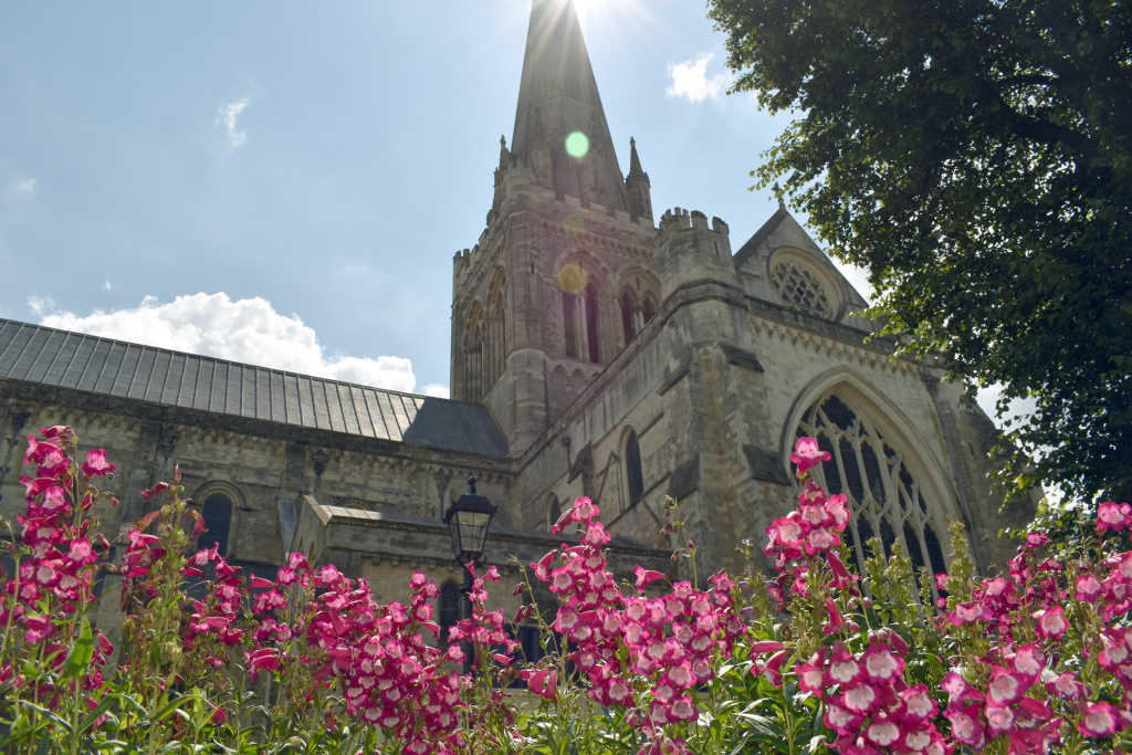 City Floral - Cathedral beds - pink flowers - cathedral in background