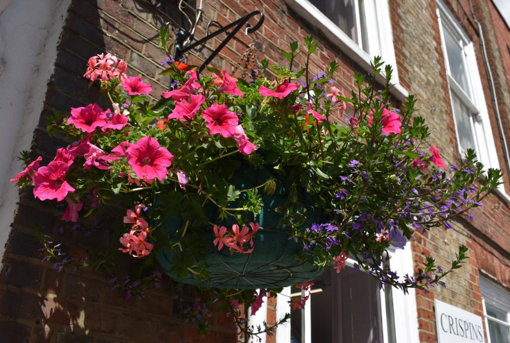 City Floral - hanging baskets - Crispins cafe
